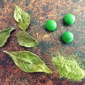 Eisenmangel, Chlorella, Curryblatt, Gerstengraspulver, Nahrungsergänzungsmittel